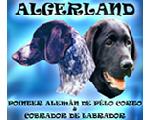 Algerland Kennel