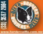 Delta Border
